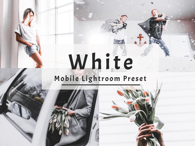 Clear lightroom catalog