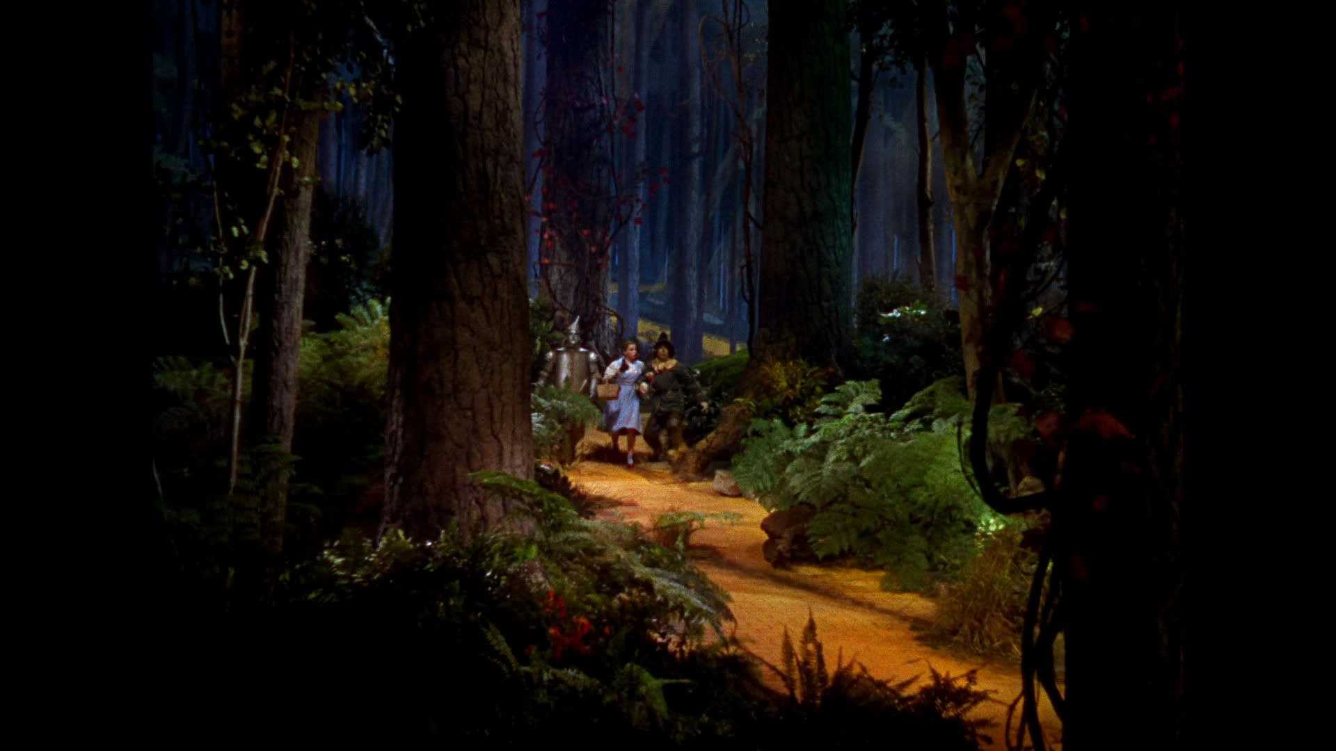 Scary Forest Path Wizard Of Oz  Google Search