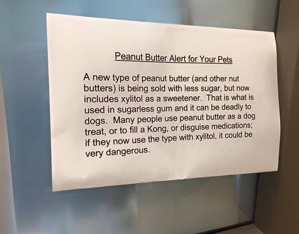 Warning Peanut Butter Peanut Butter For Dogs Xylitol Sugarless