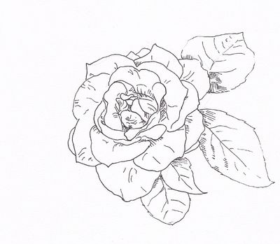 georgia o keeffe coloring pages | Coloring Picture HD For ...