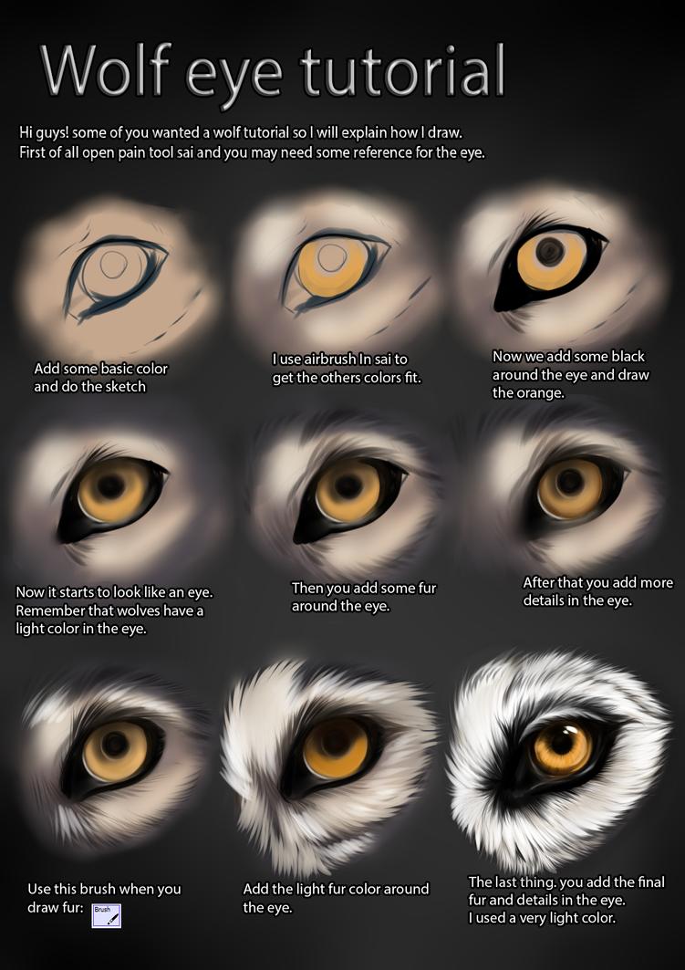 Wolf eye tutorial by TheMysticWolf on DeviantArt