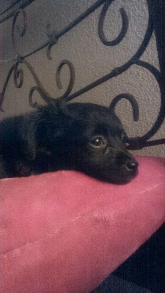 My sweet baby girl!!