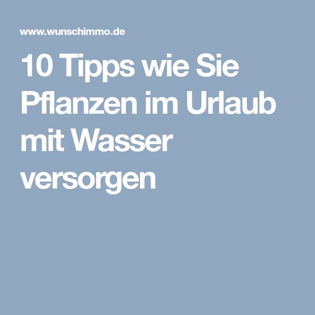 10 Tipps Wie Sie Pflanzen Im Urlaub Mit Wasser Versorgen Verde Pinterest Tips