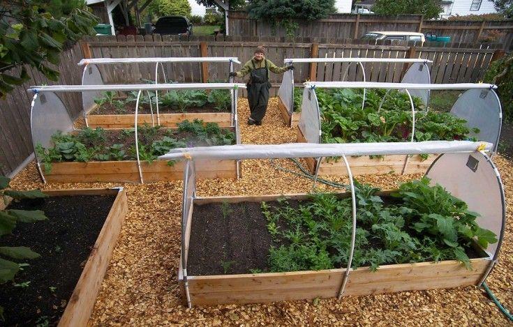 Beautiful Vegetable Garden Covers