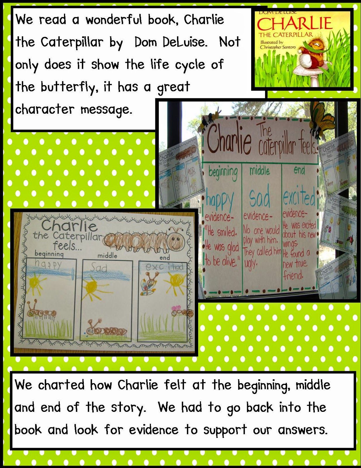 Insects Charlie The Caterpillar
