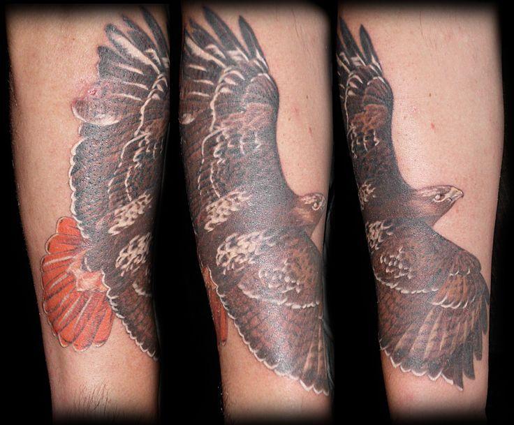 Hawk Feather Tattoo Forearm