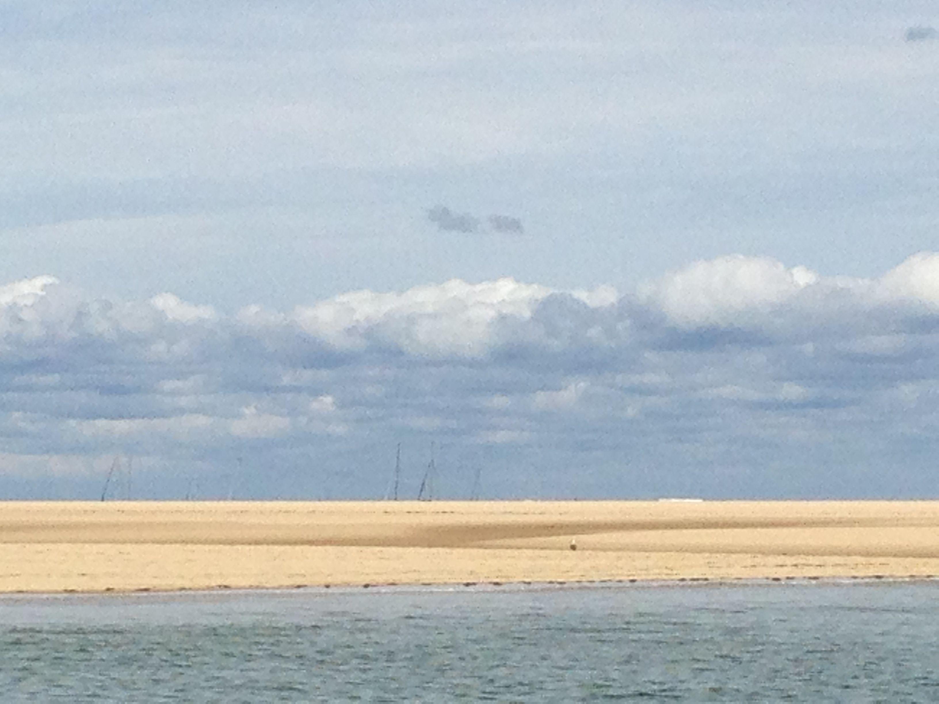 banc d Arguin sur le bassin d Arcachon ao t 2014
