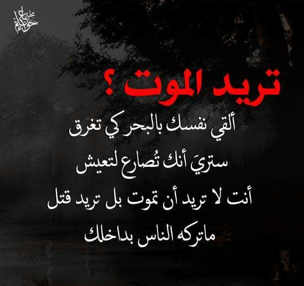 Pin By Alawa Tria On حكم Proverbs Quotes Cool Words Positive Quotes