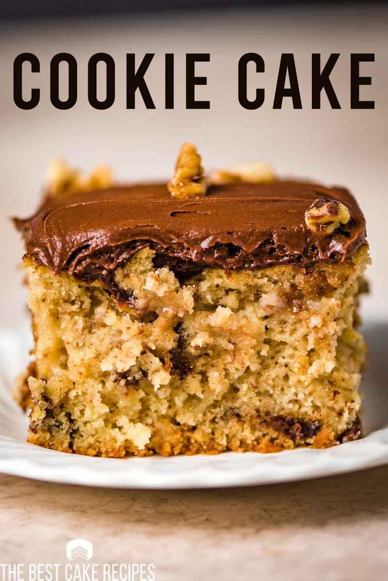 Chocolate chip cake chocolate chip cake snack cake