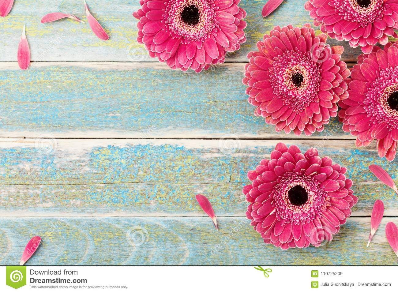 Gerbera Daisy Flower Greeting Card Background For Mother Or Womans Day Vintage Style Top View Gerbera Daisy Daisy Flower Gerbera