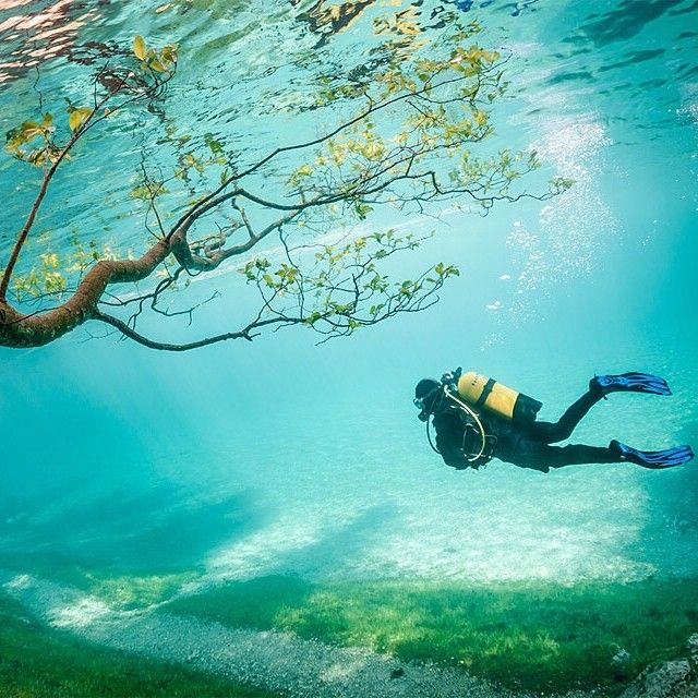 Diving in Green Lake, Austria | Photograph by Marc Henauer. Follow @EarthPix for more travel/nature shots!