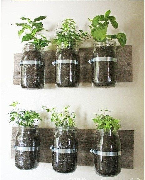 Cool idea for kitchen herbs