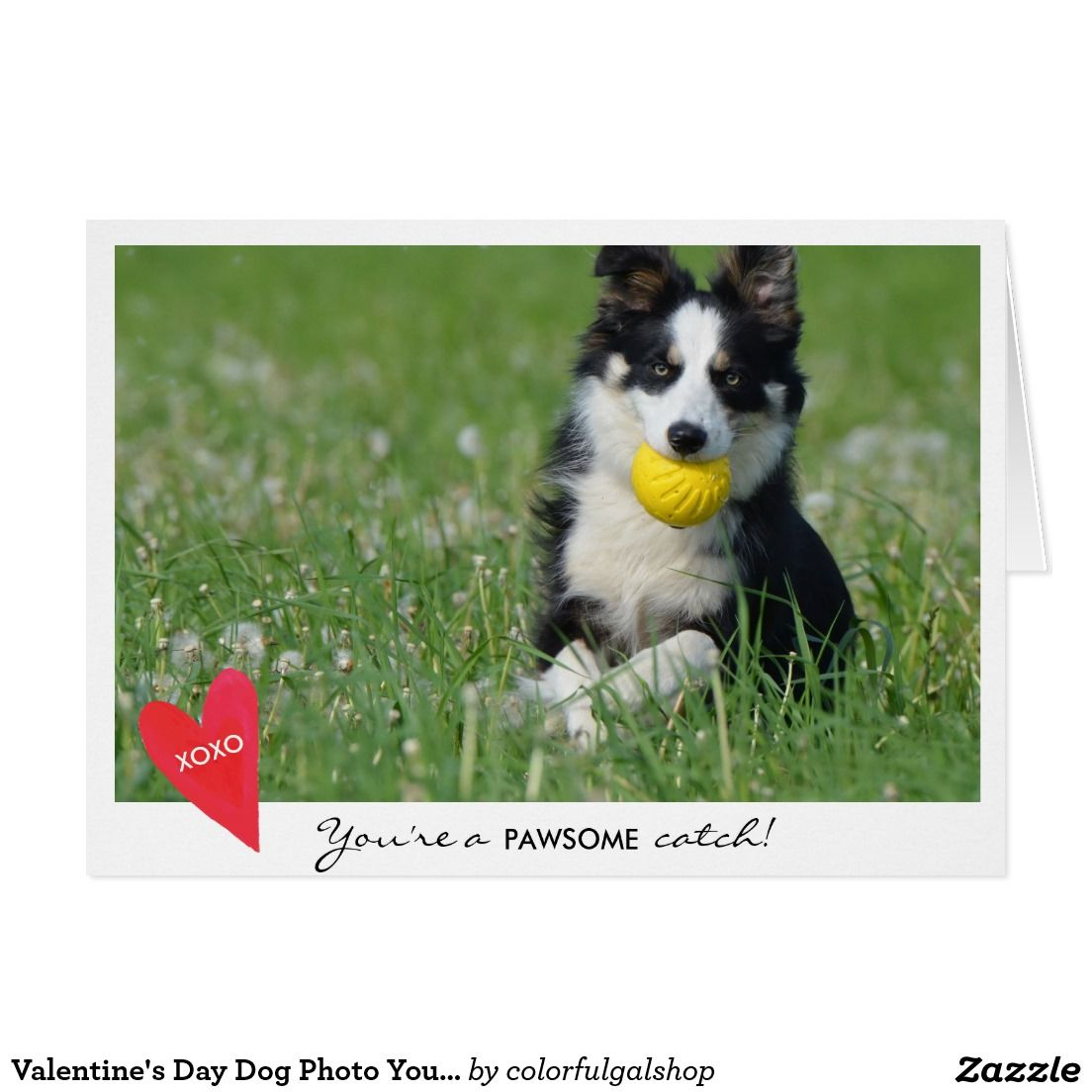 Create Your Own Card Zazzle Com Valentines Day Dog Dog Photos Create Your Own Card