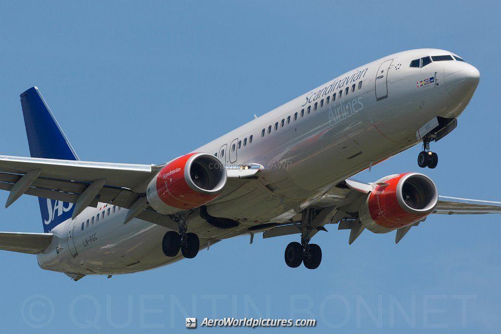 Boeing B737 800 Sas Scandinavian Airlines Ln Rgc In 2020 Scandinavian Airlines System Boeing Scandinavian