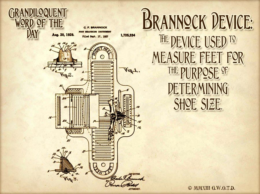 """Brannock Device (BRAN•ock dee•vise) Noun: The odd looking device found anywhere shoes are sold, used to measure the size of ones foot.  Used in a sentence: """"Hey, did you hear about Bob? He was arrested yesterday for illicit use of a Brannock device! (Apparently he's a child's size 5.) Now he's going to be a registered sex offender for being a Brannock buggerer."""""""