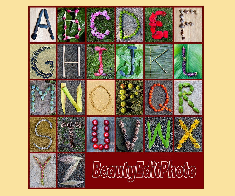 Nature Alphabet Photo Letter Art Rustic Classroom Abc Wall Letters Alphabet Wall Decor Alphabet Pictures Letters In Nature Alphabet Download Nature Letters Alphabet Nursery Art Alphabet Photos