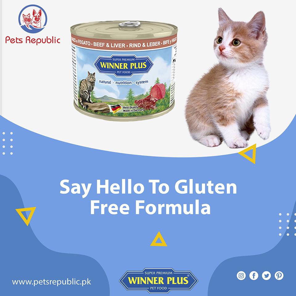 Winner Plus Gluten Free Formula In 2020 Food Animals Holistic Dog Food Premium Dog Food