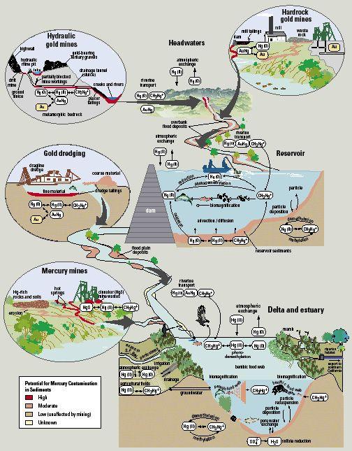 Schematic showing Schematic diagram | NORTH CAROLINA | Pinterest ...