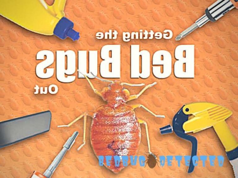 How long can bed bugs live without feeding bed bugs