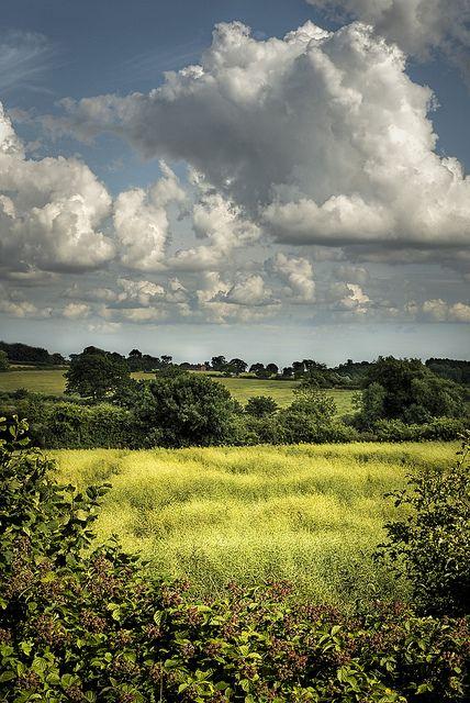 English Summer Countryside Landscape Landscape Landscape Photography