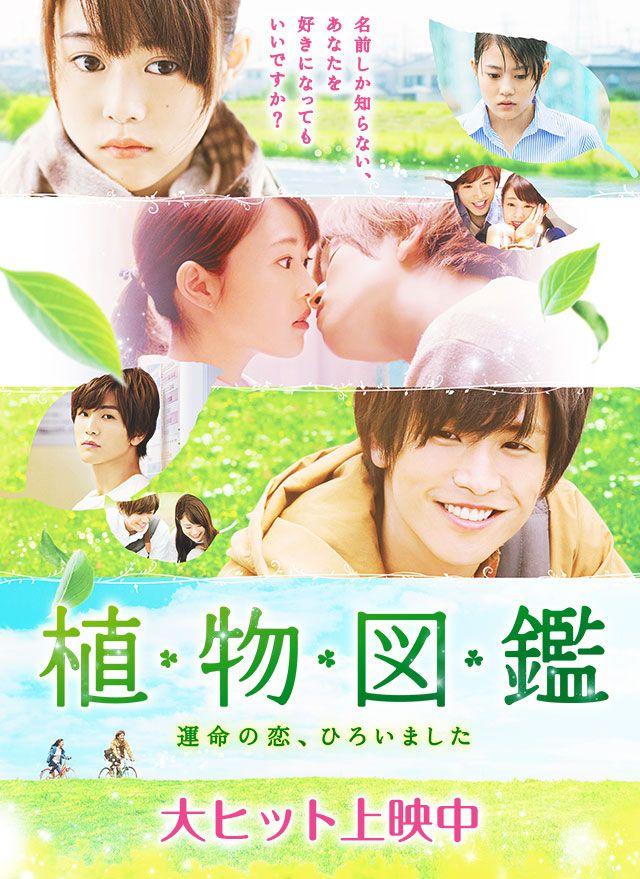 恋愛 映画