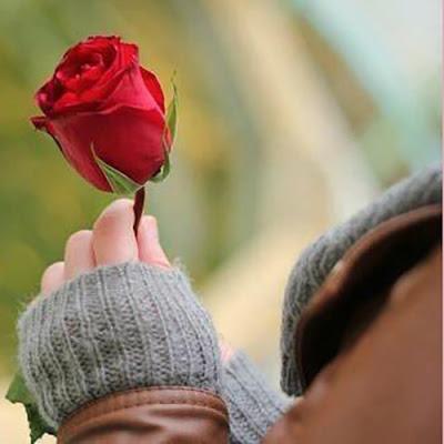 ورد الفلانتاين الجميل In 2021 Arm Warmers Flower Images Fingerless