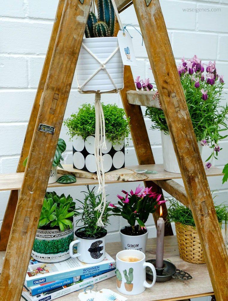 neu auf unserer terrasse eine urban jungle leiter mit viel gr n ein bisschen pink und tollen. Black Bedroom Furniture Sets. Home Design Ideas