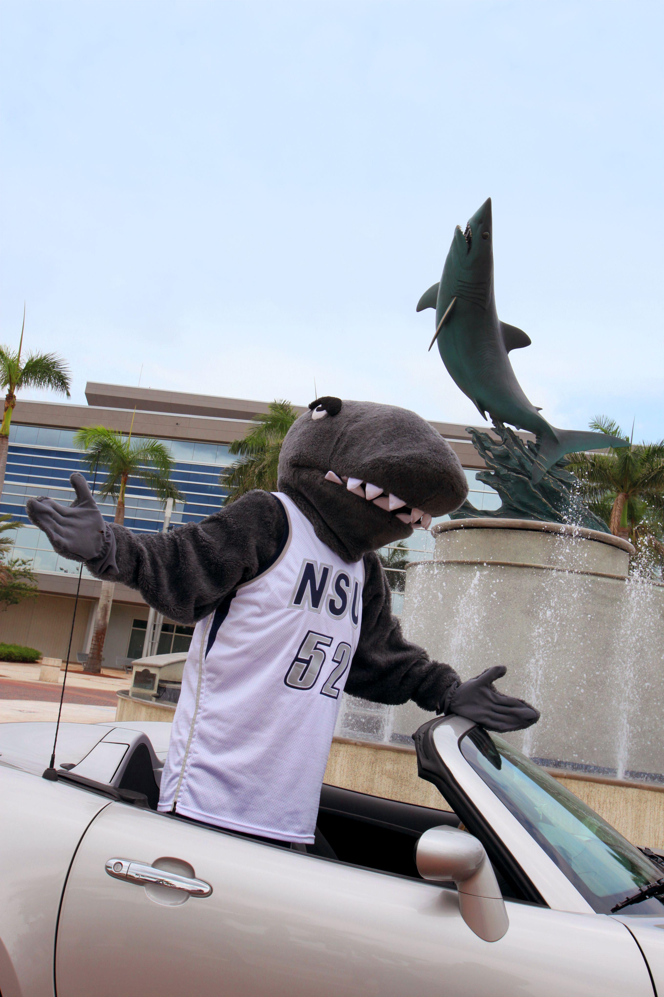 Nova southeastern university admissions essay