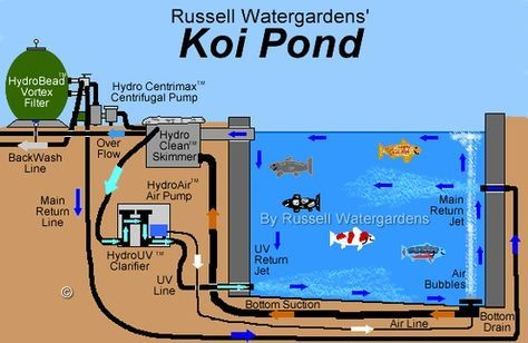 Koi pond nice cross section to explain the filtration for Design of a pond system