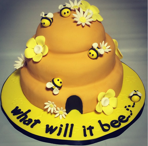 The Stir-20 Gender Reveal Cakes Almost Too Extraordinary to Eat (PHOTOS)