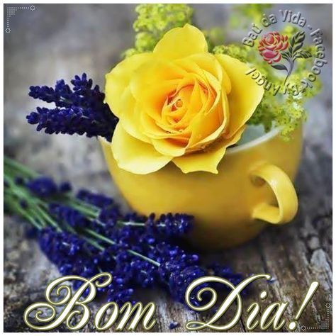 Bom Dia Com Imagens Frases E Mensagens Cartao De Bom Dia