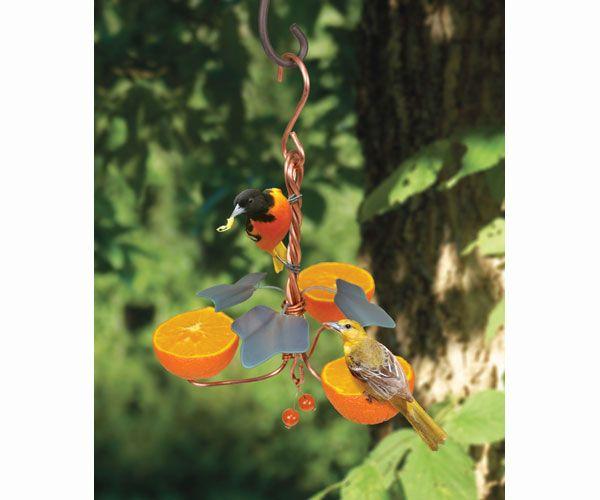 Copper Oriole Triple Fruit Feeder