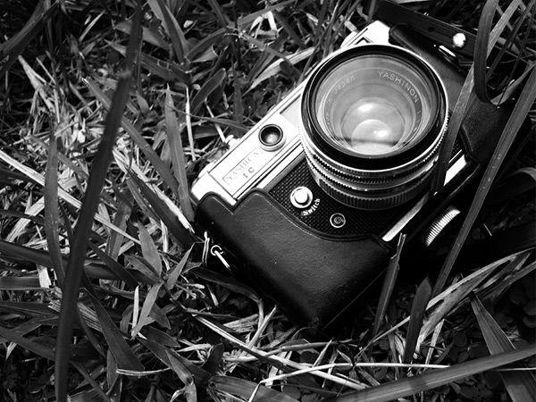 Vintage Camera Portraits | Splashnology.com