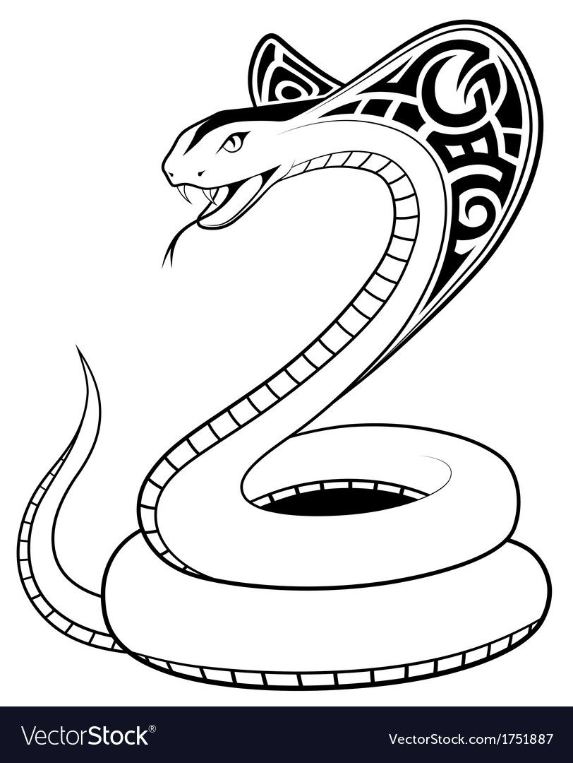 Snake Cobra In The Form Of A Tattoo Download A Free Preview Or High Quality Adobe Illustrator Ai Eps Pdf And High Snake Drawing Drawing Wallpaper Drawings