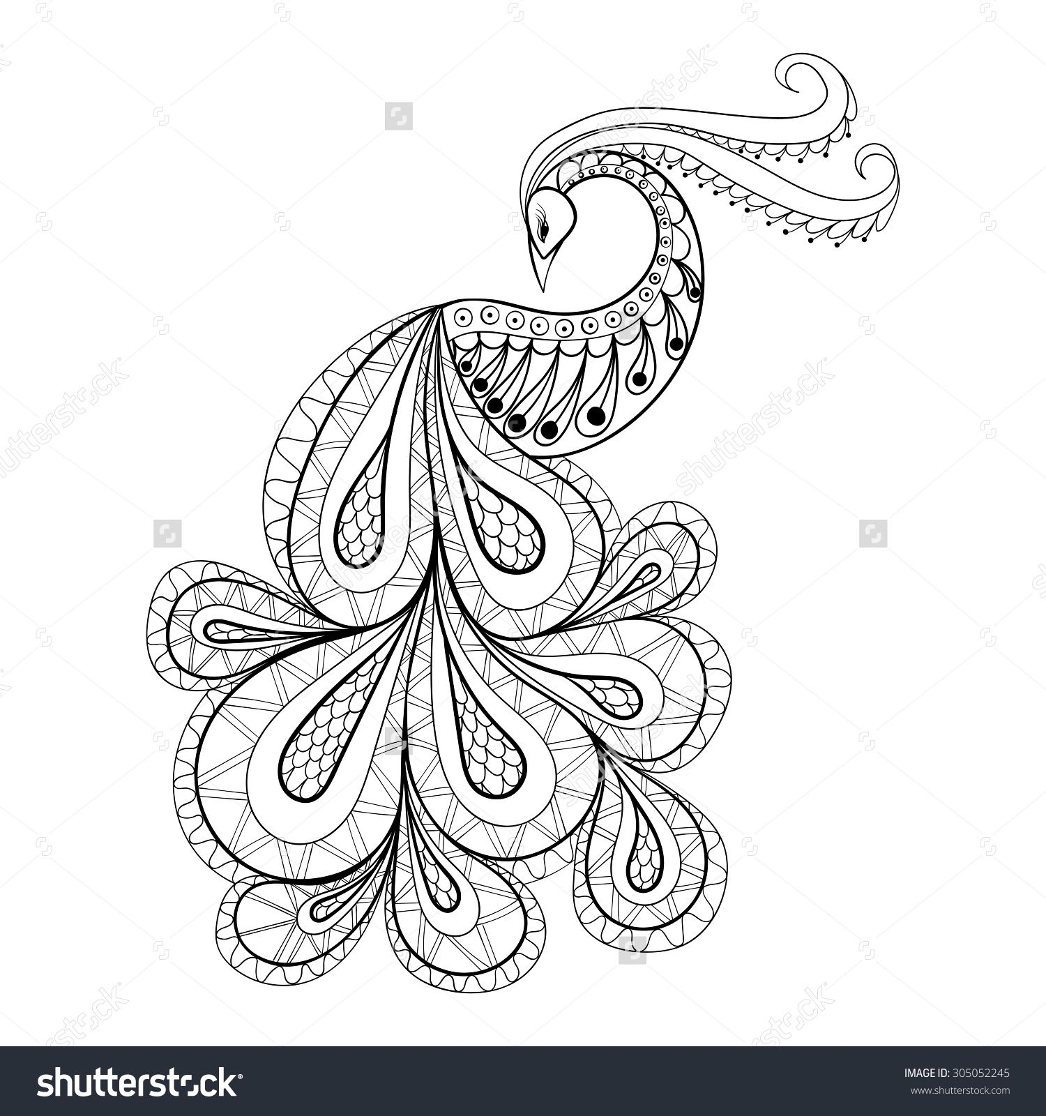 Coloring pages of mehndi hand pattern - Hand Drawn Peacock For Antistress Coloring Page Vector