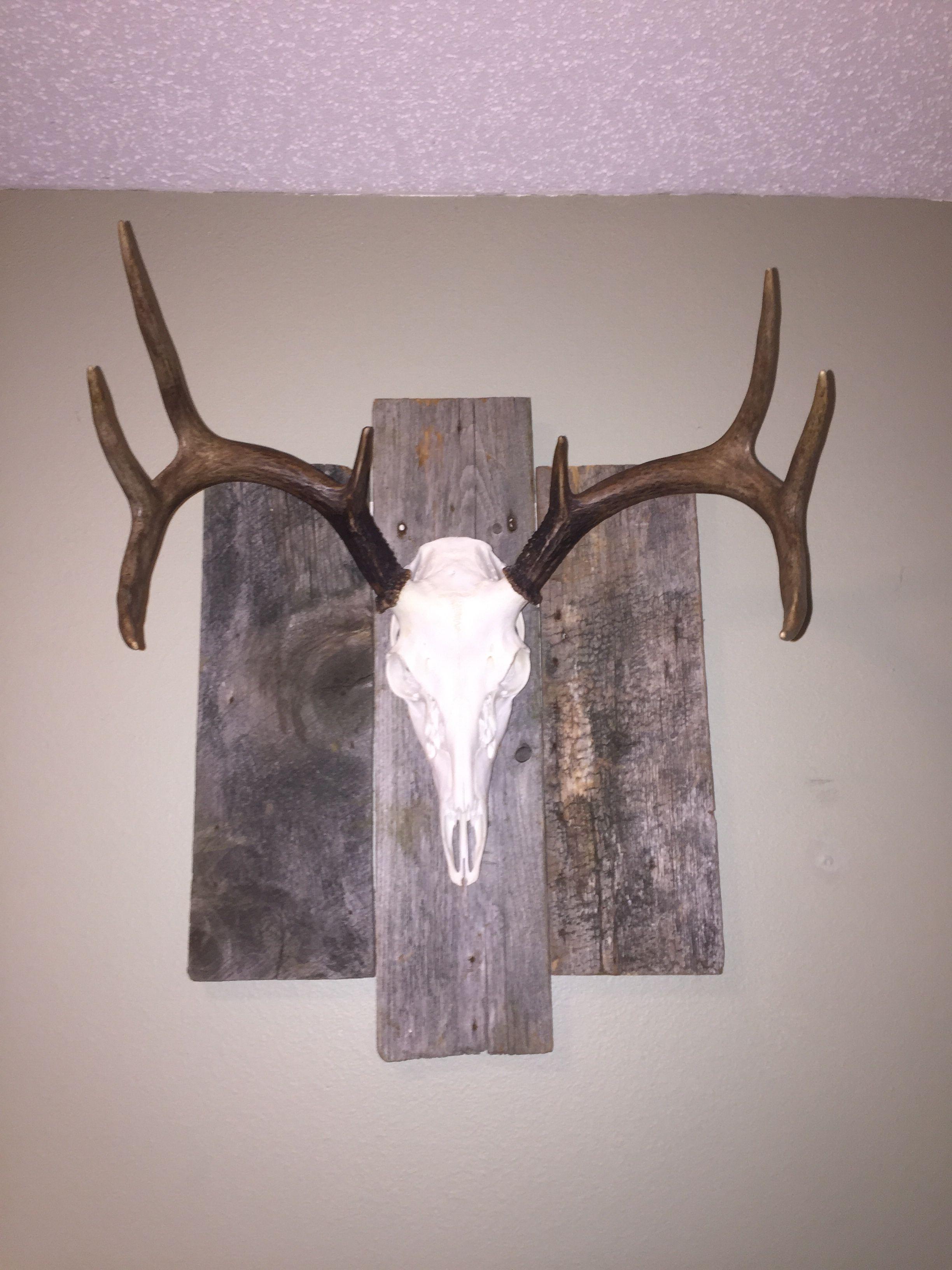 Rustic Wood Plaque For European Mount Deer Mount Decor Deer Decor Deer Antler Decor