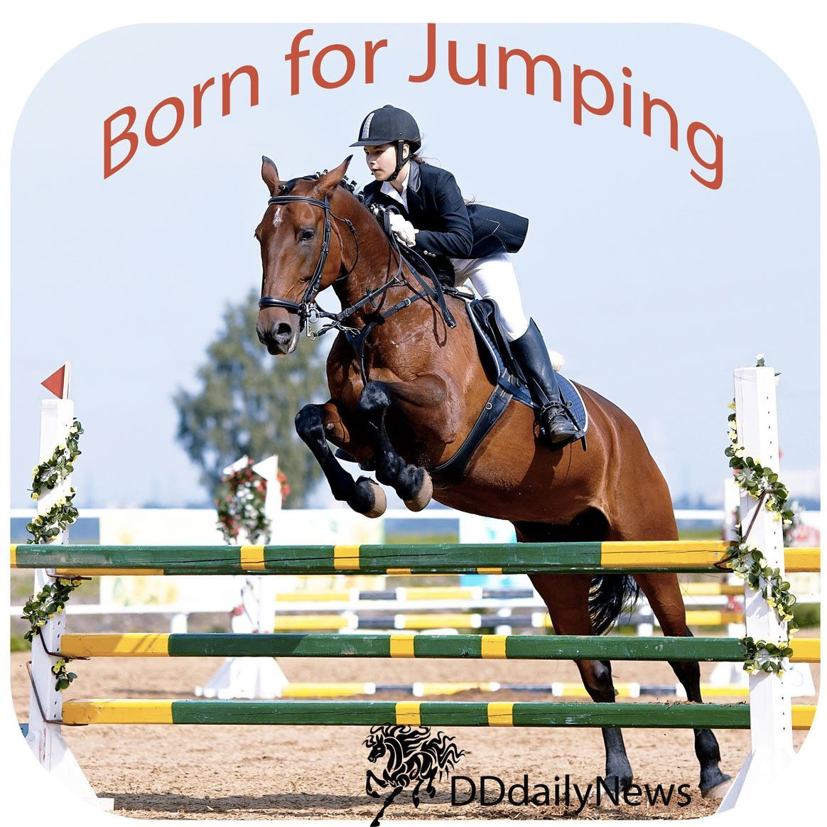 Equestrian Home Decor - Coaster - Jumping