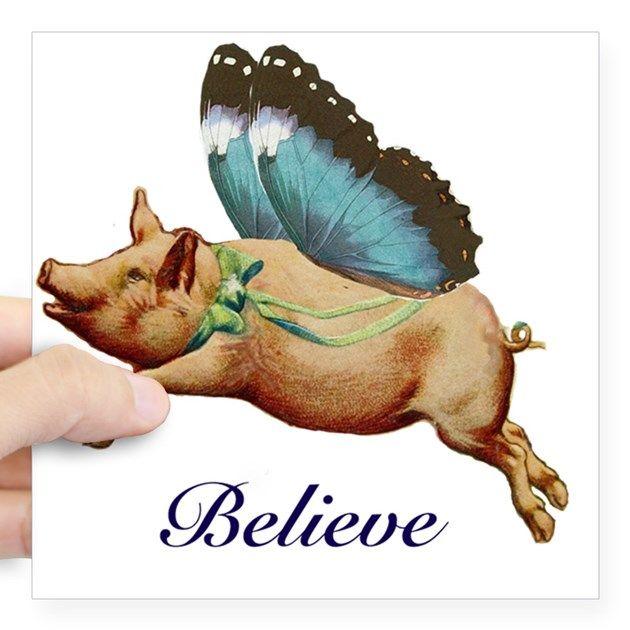 Believe Square Sticker 3 X 3 Believe Sticker By Reese Morrell Svinki Izobrazheniya Zhivotnyh Porosyata