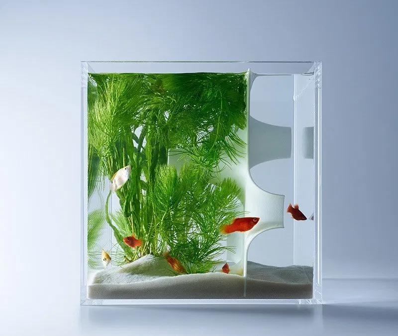 Waterscape Aquarium Exhibit Architectural Fish Tanks Aquarium Design Fish Tank Design Aquarium