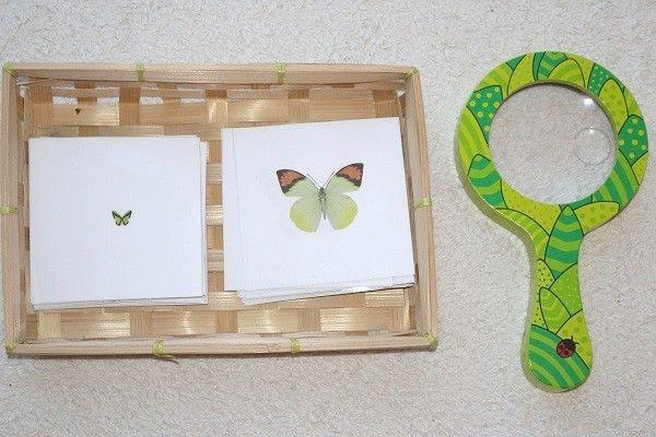 initiation la loupe activit montessori 3 4 ans. Black Bedroom Furniture Sets. Home Design Ideas