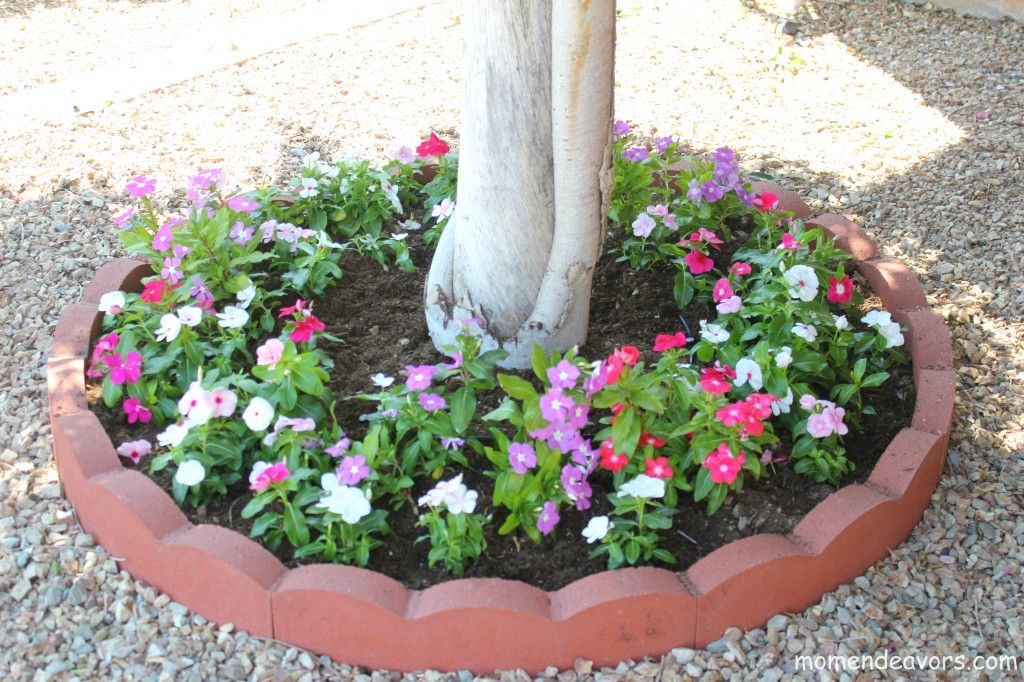 diy tree ring flower planter adding