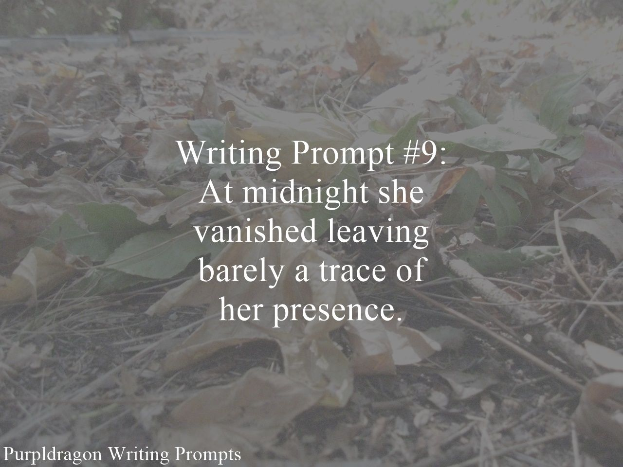 Writing Prompt #9: At midnight she vanished leaving barely a trace of her presence.