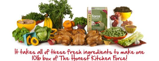 The Honest Kitchen Makes Dehydrated Raw Foods Made In A Human New Honest Kitchen Dog Food Inspiration