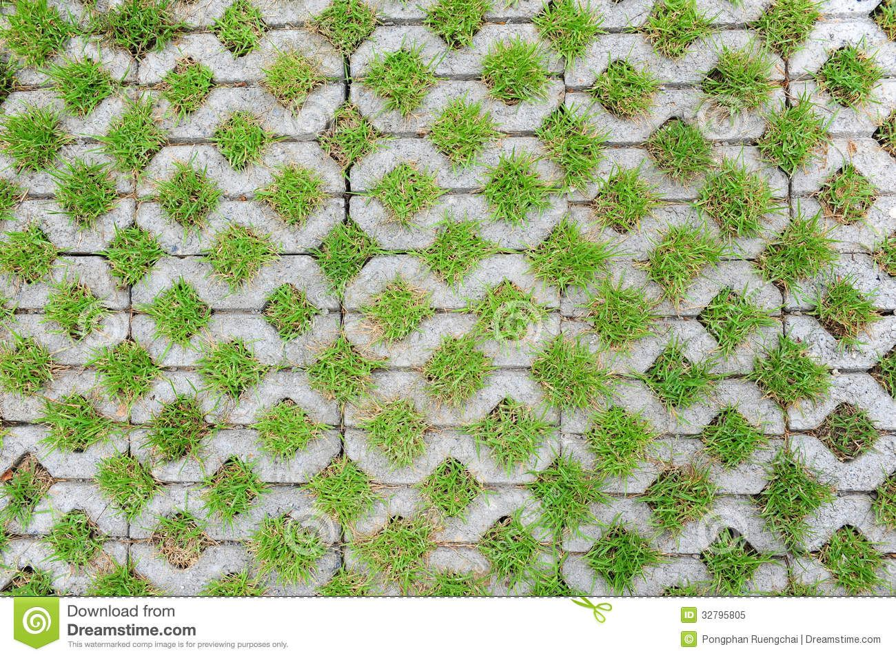 Grass pavers texture images galleries for Green pavers