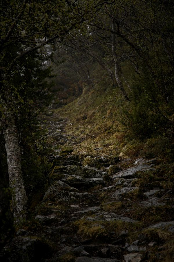 The trail to the witch, Crystal's house in the woods next to Westville. | imaginarywriter