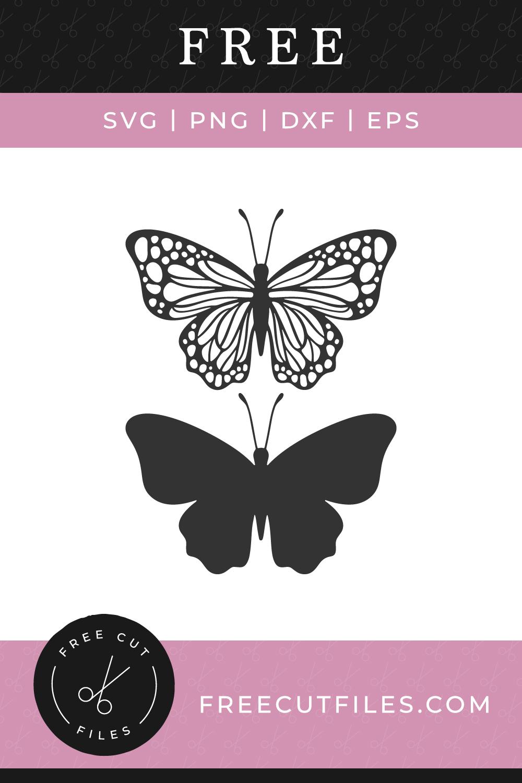 78 Cricut butterfly ideas in 2021   butterfly, silhouette