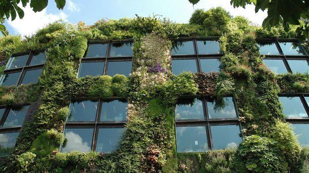 Green Living Walls for a Breathing Office Lawn, Garden - diseo de jardines urbanos