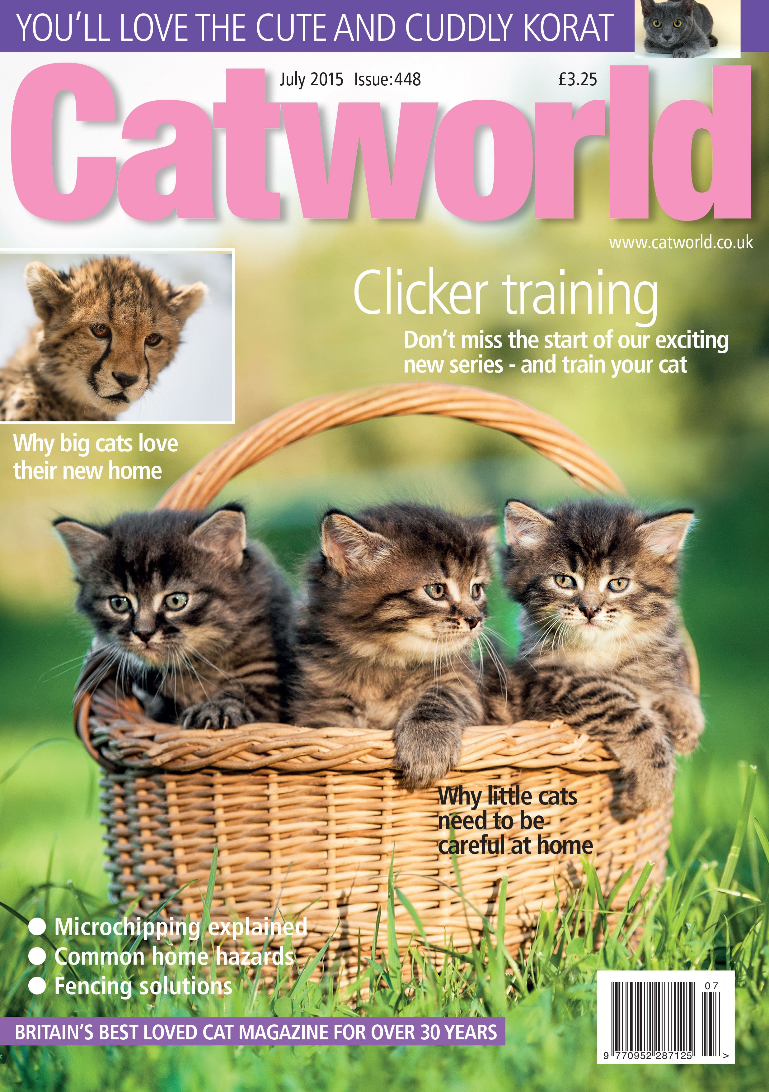 Issue 448 With Images Cat Love Cuddly Cats