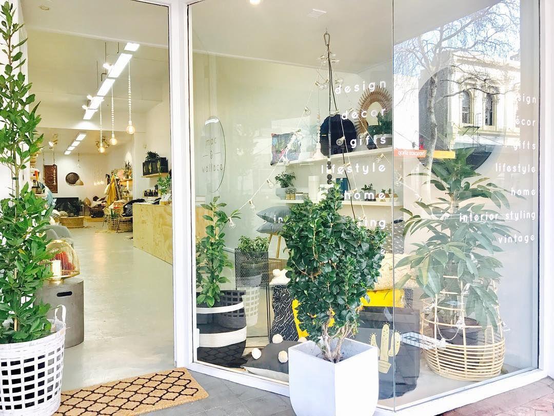 Beautiful Day In Dunedin City Nz Interiordesign Decor Shop