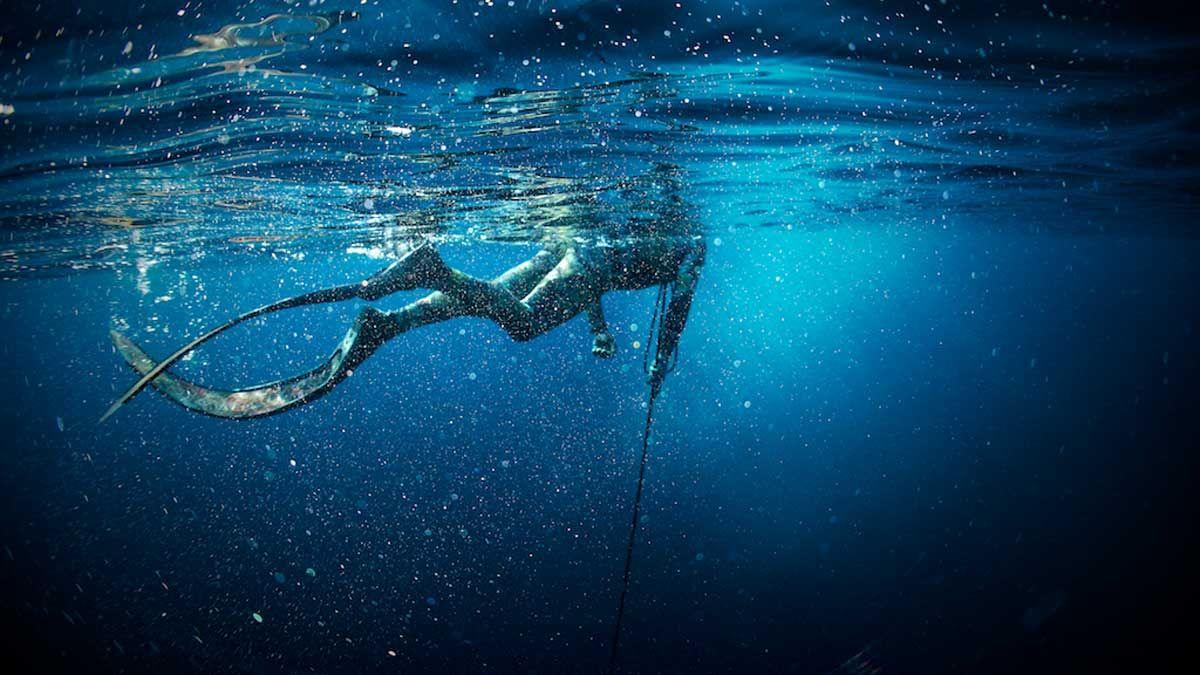 Documentário Português sobre pesca submarina é um caso de sucesso!  #Azores #Spearfishing #Scubadiving